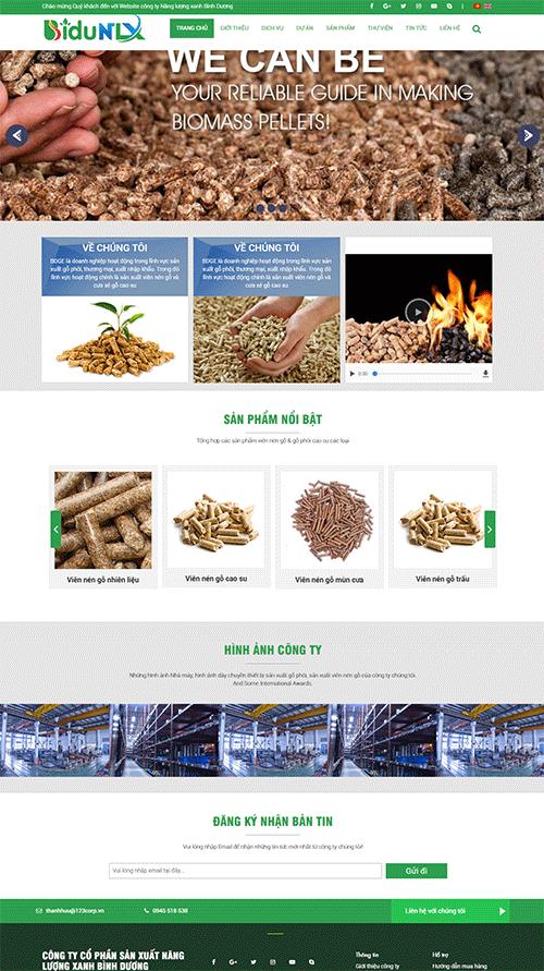 website-gioi-thieu-cong-ty-nang-luong-sach-binh-duong